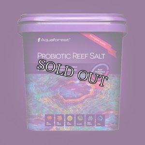 画像1: Aqua forest(アクアフォレスト)Probiotic Reef Salt 22Kg